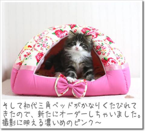 141227sankaku_new